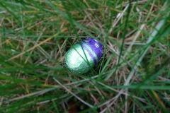 Easter Joy at Sint-Kwintens